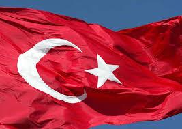 Turcia în relaţiile internaţionale. Retrospectiva anului 2013