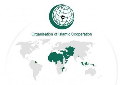 Summit-ul Organizaţiei Cooperării İslamice (OCI) şi obiectivele Turciei